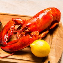 加拿大熟波士頓龍蝦 Canadian Cooked Boston Lobster (每隻)