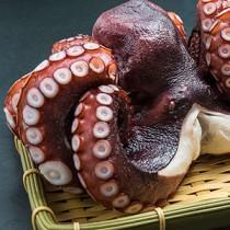 日本大八爪魚 Japan Octopus Tentacle (每磅)
