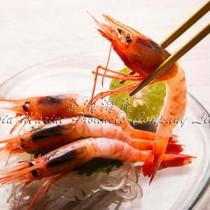 俄羅斯甜蝦刺身 Russian Sweet Shirmp Sashimi (每份8隻)