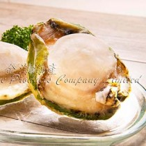 澳洲青邊鮑魚1-2頭 Australian Green-lip Abalone (每磅)