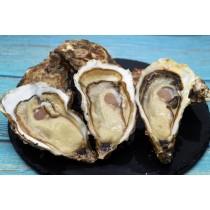 西班牙生蠔 Spain-Oyster Arousa 150-200G (每打)